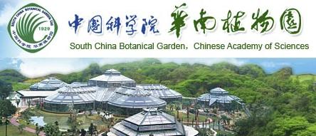 华南植物园视频新闻