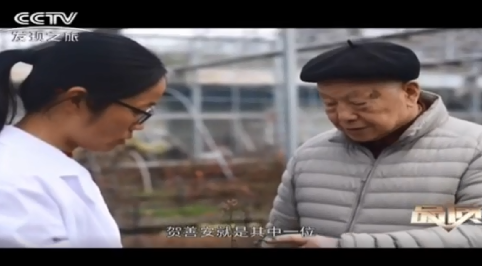 南京中山植物园:戏说蓝莓的前世今生
