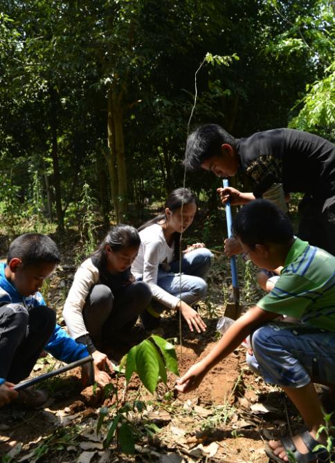 俱乐部成员栽种回归植物.png