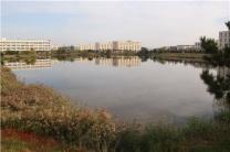 山东药品食品职业学院百草园