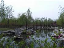 阳泉植物园