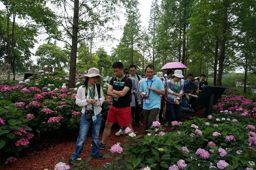 圆我们的植物梦 ——中国植物园联盟2017年植物分类与鉴定培训班在沪开班