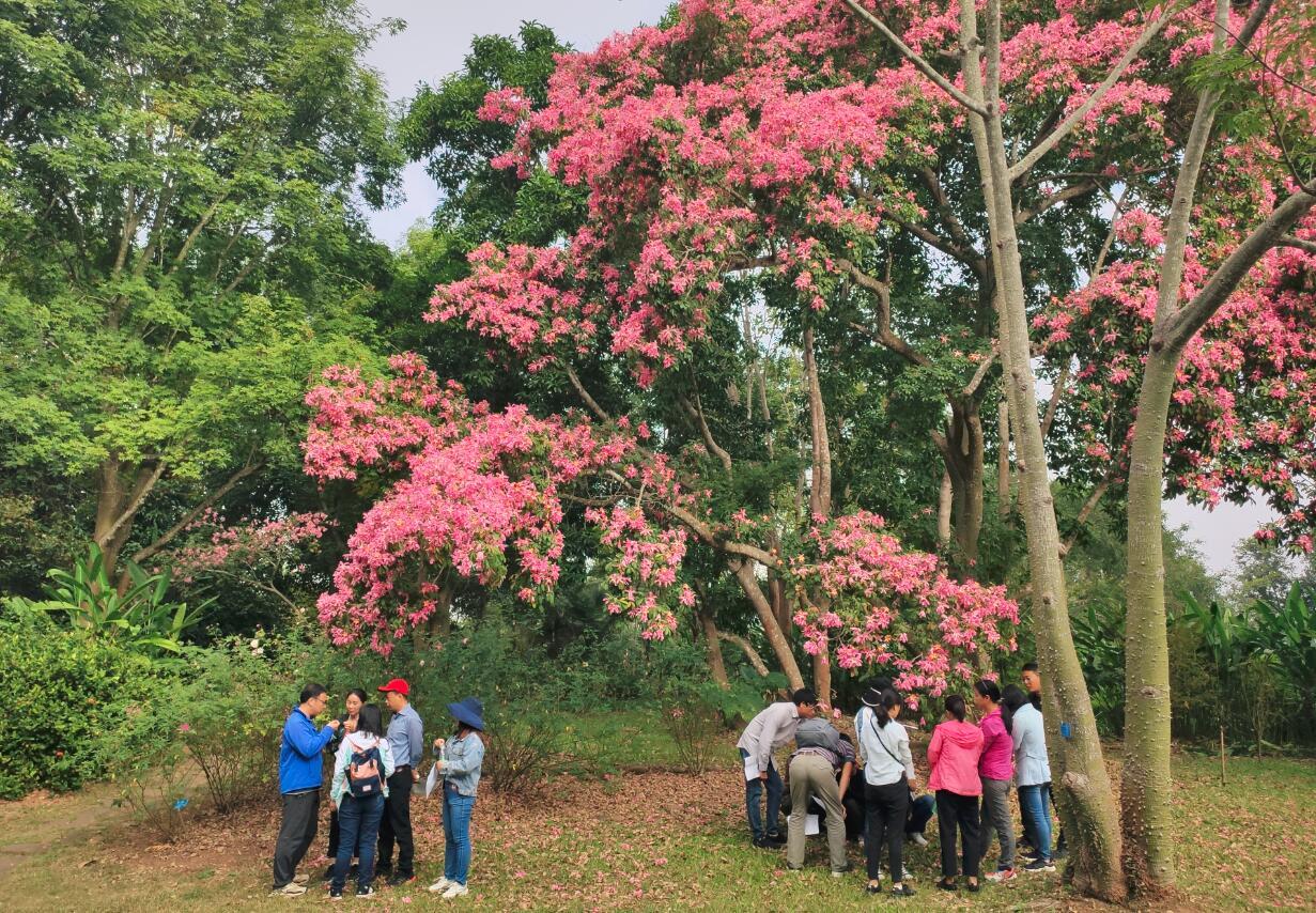 2019年园林园艺与景观建设培训班圆满结束