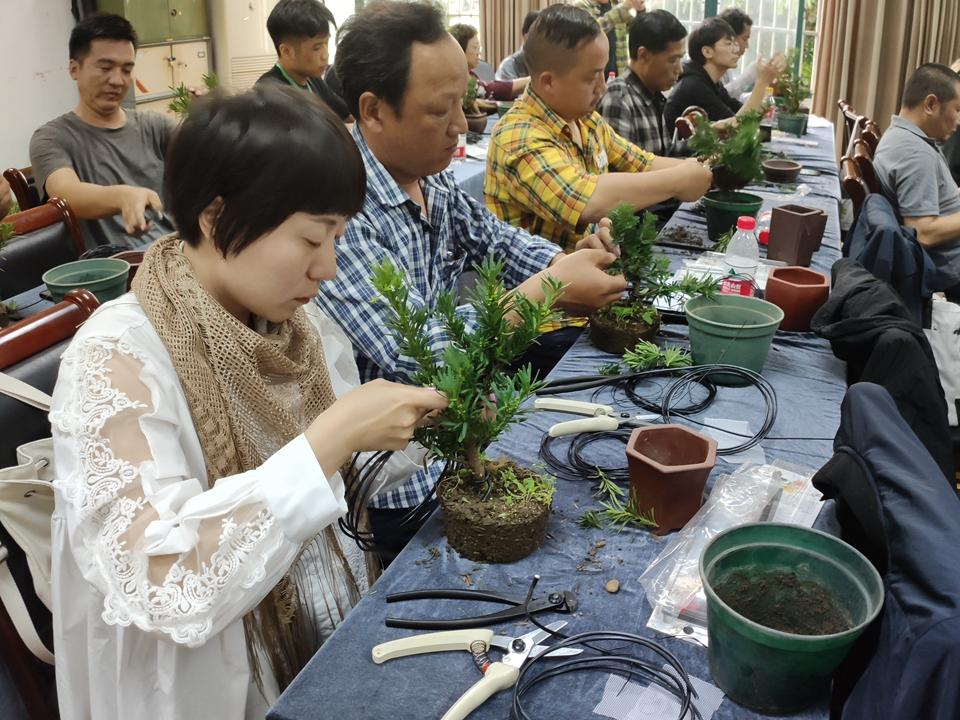 2019年植物造型艺术培训班