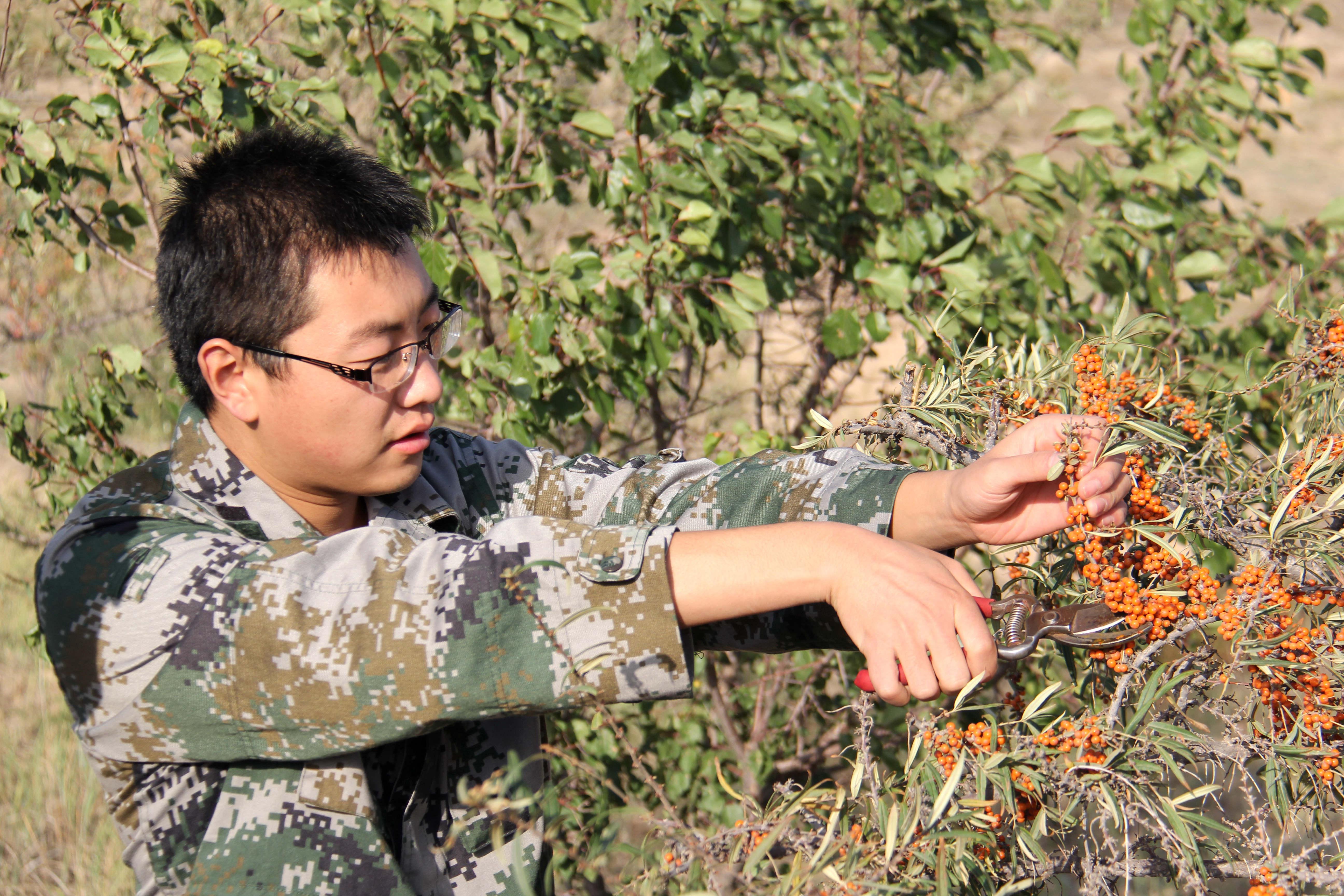 南宁市体育休闲公园植物多样性调查研究初探